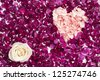 Flower head of white rose with heart shape made out of carnation petals against pink rose petals - stock photo