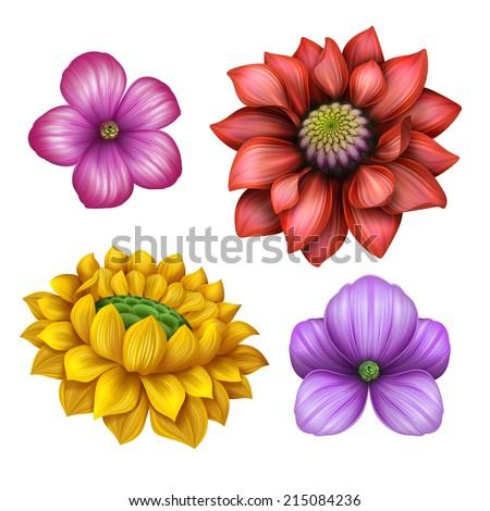 flower illustration, design elements isolated on white background, clip-art - stock photo