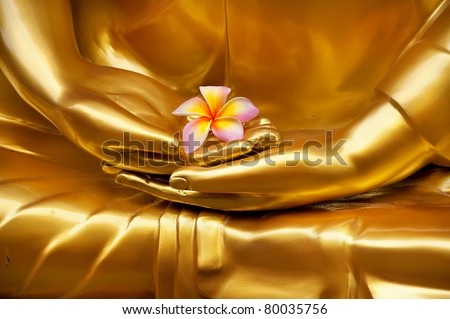 flower in hand of image buddha - stock photo