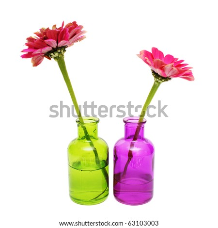 flower in the bottle with water - stock photo
