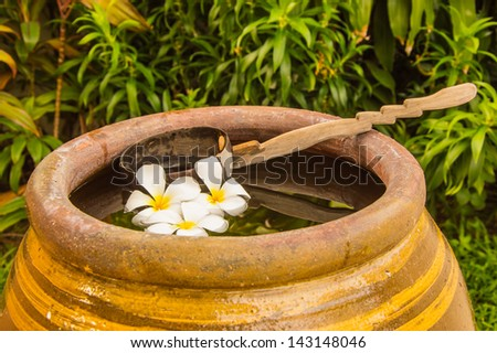 flower in the jar - stock photo