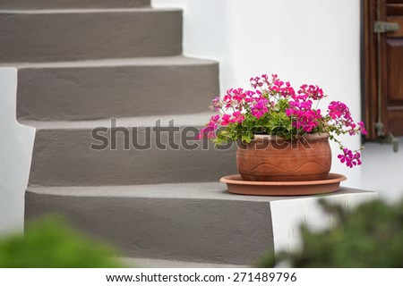 Flower in the pot on the staircase on Santorini island, Greece - stock photo
