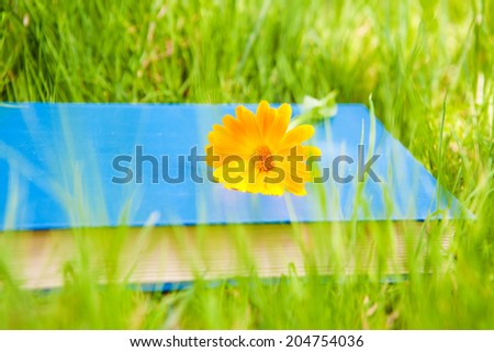 flower on the book - stock photo