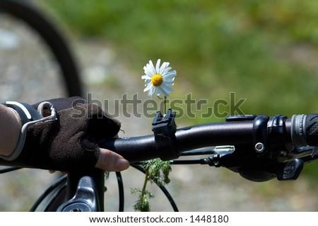 Flower on woman bike - stock photo