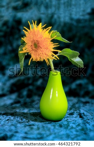 flower picture decorative sunflowers in a vase on a blue background
