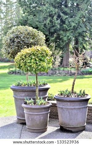 Flower pot in the park - stock photo