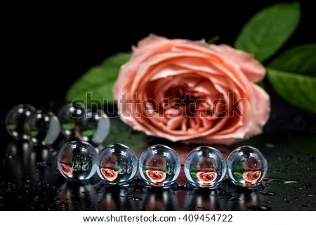 Flower, rose, marbles, close-up, macro. - stock photo