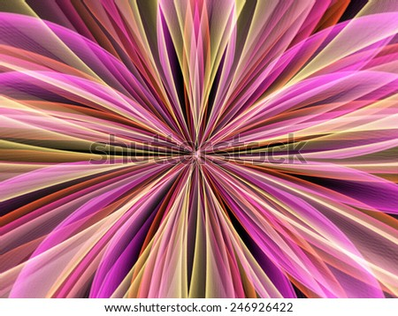Flower Starburst - stock photo