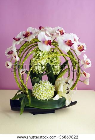 Flower,studio Shot  - stock photo