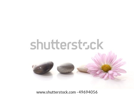Flower with spa stones - stock photo