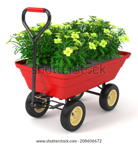 Flowerbed in hand trolley. Isolated on white background