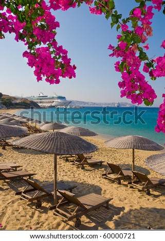 Flowering bougainvillea on the beach against the backdrop of the Mediterranean Sea and cruise liner. - stock photo
