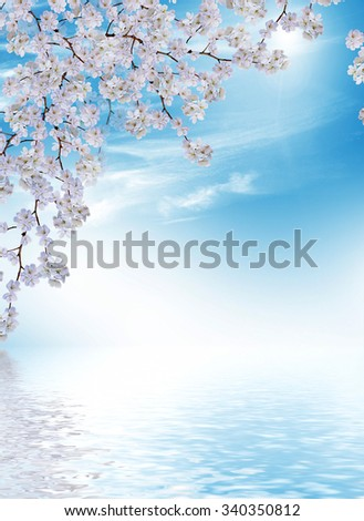 Flowering branch of apple against the blue sky with clouds. - stock photo