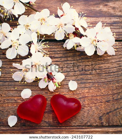 Flowering branch with white delicate flowers on wooden surface. Declaration of love, spring. Wedding card, Valentine's Day greeting. Wedding bouquet, background. - stock photo