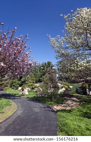 Flowering Cherry Tree and Dogwood Tree Along a path in a park on a Spring day. - stock photo