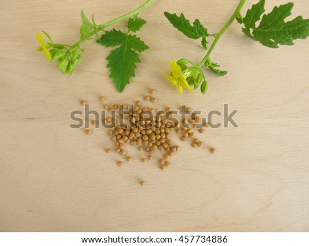 Flowering mustard and mustard seeds