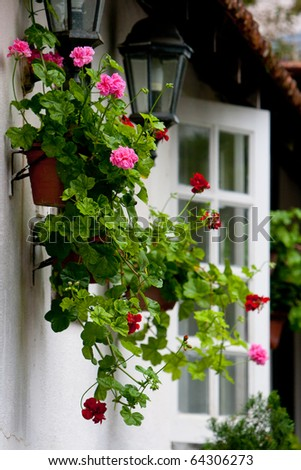 Flowerpot decoration hanging on the wall in the home garden. - stock photo