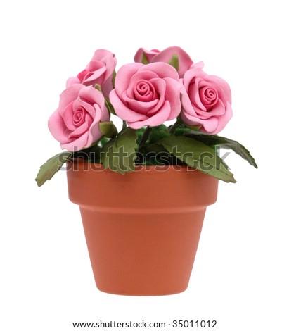 Flowerpot full of roses - stock photo