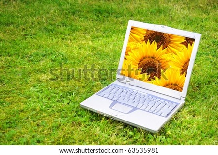 flowers and laptop or notebook on green grass with copyspace - stock photo