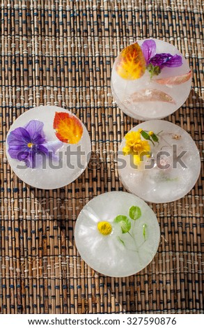 Flowers and leafs in the ice - stock photo
