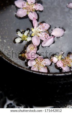 Flowers and pink cherry in bowl water - stock photo