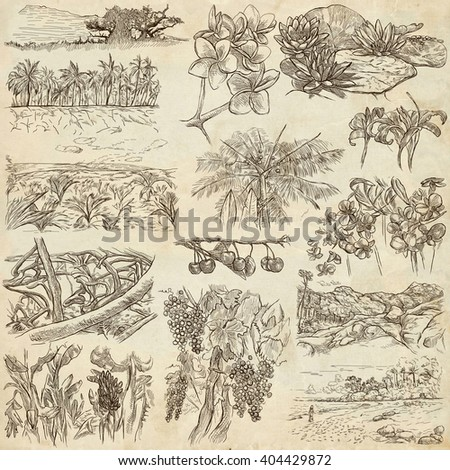 FLOWERS and TREES. Collection of an hand drawn illustrations. Description, Full sized hand drawn illustrations - freehand sketches. Drawings on old paper background. - stock photo