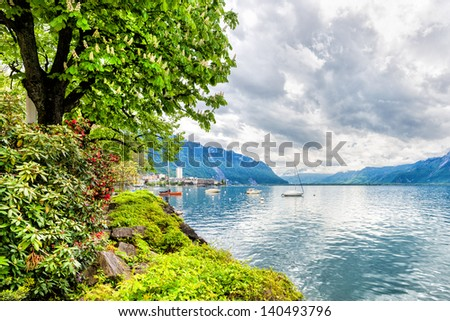 Flowers and trees near Geneva lake, Montreux. Switzerland - stock photo