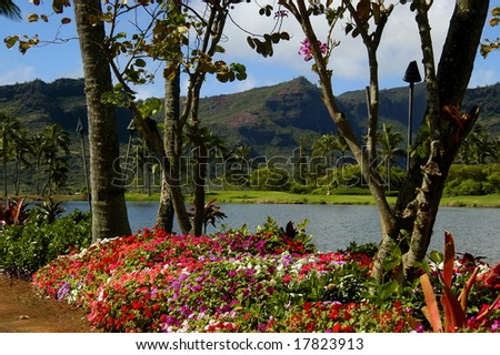 Flowers and two wild orchid trees frame one of the Kauai Mountain peaks.  Fresh water lagoon separates one beauty from another. - stock photo