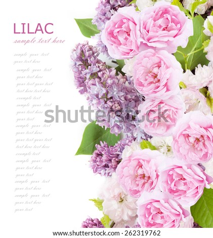 Flowers background isolated on white with sample text. Lilac and roses - stock photo