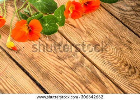 Flowers backgrounds vintage style with flowers of nasturtium arranged on brown wood useful as greeting card, mothers day card or invitations card - stock photo