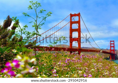 Flowers blussoome at the Golden Gate Bridge in San Francisco, CA.Frommers travel guide considers Golden Gate Bridge possibly the most beautiful, certainly the most photographed, bridge in the world. - stock photo