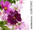 Flowers decorative border design - stock photo