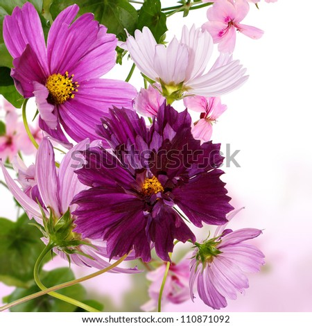 Flowers decorative border design - stock photo