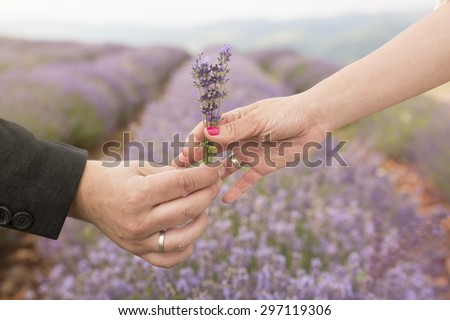 Flowers for my girl. Flower gift for wife or girlfriend. - stock photo