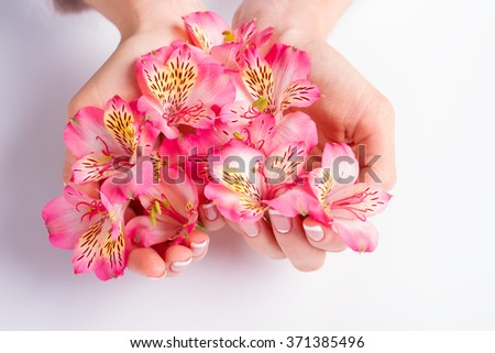 Flowers freesia in a heart shape. Delicate female hands. - stock photo