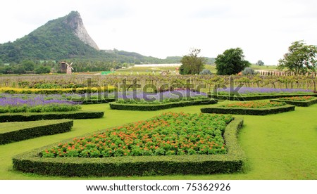 flowers garden and mountain view - stock photo
