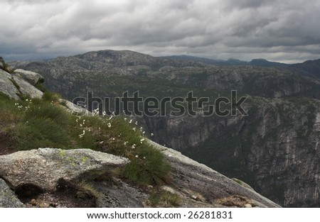 Flowers growing on a slope of a mountain surrounded by rocks; dramatic sky; geometrical shapes.