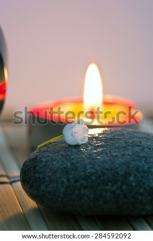 Flowers in a bowl color of brown with stone for SPA - stock photo