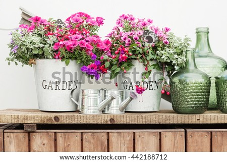 Flowers in a bucket, glass vintage bottles on wooden background, cozy home rustic decor, cottage living - stock photo