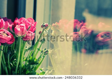 flowers in a glass vase by the window - stock photo
