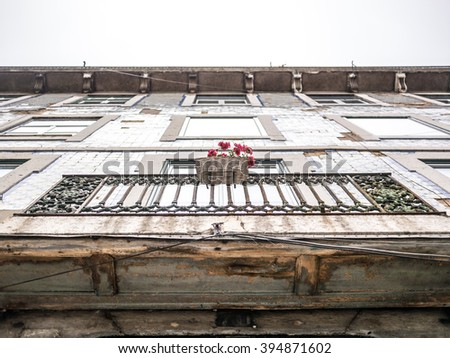 Flowers in a portuguese facade in Lisbon, Portugal - stock photo