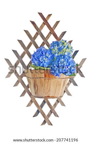 Flowers in basket for wall mounting  - stock photo