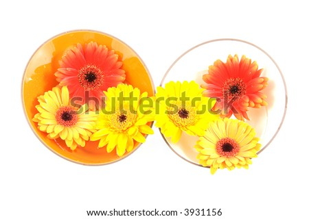 Flowers in bowls