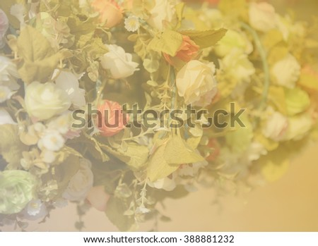 Flowers in pastel styles.Background of Beautiful flower decoration.beautiful flowers made with color filters.selective focus. - stock photo