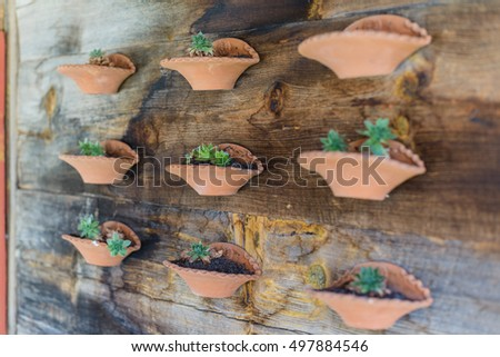 Flowers in pots attached to a wooden house