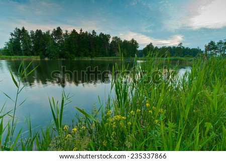 Flowers landscape with tree and lake - stock photo