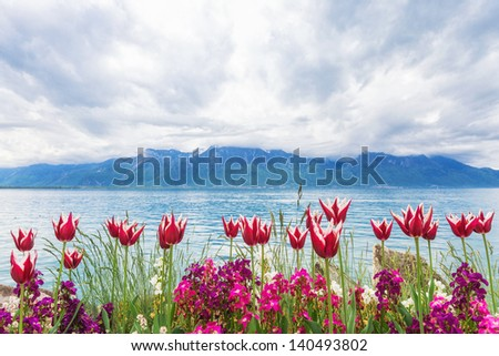 Flowers near Geneva lake, Montreux. Switzerland - stock photo