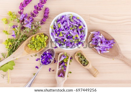 flowers of lavender, thyme and lady's mantle / violet, edible flowers / Blossoms