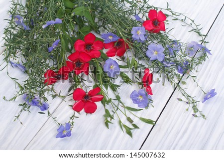 Flowers of red and blue flax with buds on a wooden table - stock photo