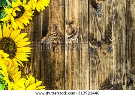 Flowers Of Sunflowers In Yellow Color On Rustic Wood Background Backgrounds